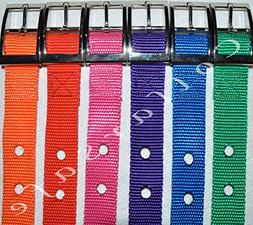 """CollarSafe Metal Buckle Style 1"""" Wide Replacement Collar-Fit"""